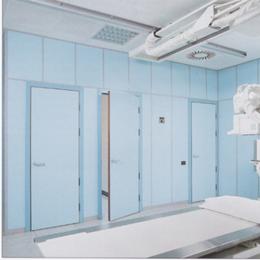 Portes plombées pivotantes, pb 1 mm (huisserie 100 x 70 mm)